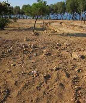 Κατασκευή αυτόματου ποτίσματος σε πλατείες και κοινόχρηστους χώρους στον Δήμο Βάρης-Βούλας-Βουλιαγμέ